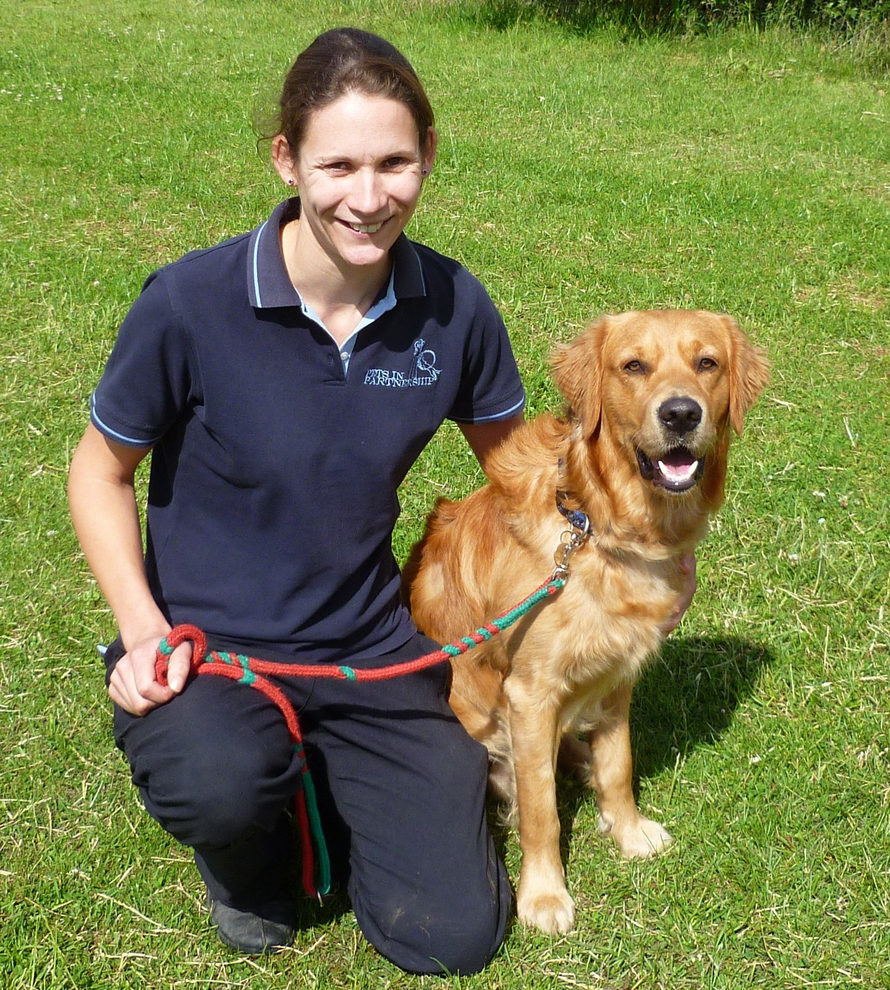 How To Become A Guide Dog Trainer