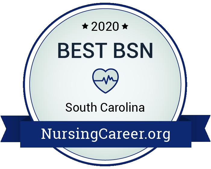 Best Nursing Bachelor's Degrees in South Carolina Badge